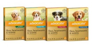 Advocate Dog 22-55lbs 2.5ml 3 pack