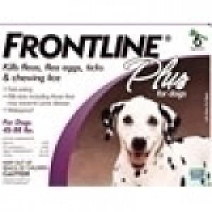 Frontline Plus for Medium Dog, 6 Packs