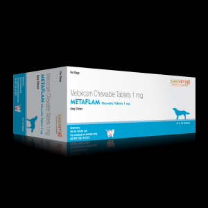Metaflam 1