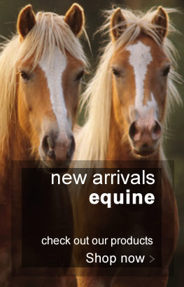 discount equine medications